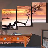 e-Home® Kuolleenmeren kellon kankaalle 3kpl