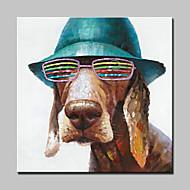 מצויר ביד בעלי חיים / Pop ציורי שמן,מודרני פנל אחד בד ציור שמן צבוע-Hang For קישוט הבית
