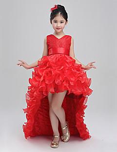 prinsessa lakaista / harjalla juna kukka tyttö mekko - puuvilla polyster hihaton v kaula kukka baihe
