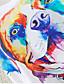 Nais- Lyhythihainen Keskipaksu Pyöreä kaula-aukko Puuvilla Kaikki vuodenajat Söpö / Aktiivinen Urheilu T-paita,Kukka Monivärinen