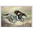 tanie Obrazy: motyw zwierzęcy-Hang-Malowane obraz olejny Ręcznie malowane - Zwierzęta Fason europejski Nowoczesny Brezentowy