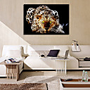cheap Abstract Paintings-VISUAL STAR® Leopard Fantastic Canvas Wall Picture Art for Living Room Ready to Hang