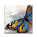 olcso Virág festmények-Hang festett olajfestmény Kézzel festett - Állatok Modern Vászon