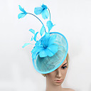 cheap Party Headpieces-Feather / Net Fascinators with 1 Special Occasion Headpiece