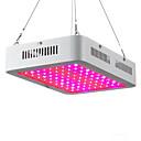 abordables Lampe de croissance LED-80W 2000-2300lm Luminaire croissant 100 Perles LED LED Haute Puissance Blanc Chaud UV (Lumière Noire) Bleu Rouge 85-265V
