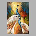 olcso Állatos festmények-Hang festett olajfestmény Kézzel festett - Állatok Modern Anélkül, belső keret / Hengerelt vászon