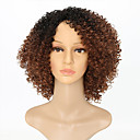 cheap Synthetic Capless Wigs-Synthetic Wig Kinky Curly Synthetic Hair Ombre Hair Brown Wig Women's Medium Length Capless Black / Brown