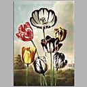 זול ציורי שמן-ציור שמן צבוע-Hang מצויר ביד - פרחוני / בוטני כפרי בַּד