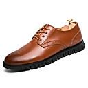 זול נעלי ילדות-בגדי ריקוד גברים נעליים פורמליות עור סתיו / חורף נוחות / נעליים פורמלית נעלי אוקספורד שחור / חום / מסיבה וערב / לבש נעליים