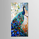 cheap Oil Paintings-Oil Painting Hand Painted - Abstract Modern Canvas