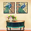זול אומנות ממוסגרת-חיות פרחוני/בוטני איור וול ארט, פלסטיק חוֹמֶר עם מסגרת For קישוט הבית אמנות מסגרת סלון