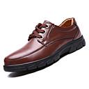 tanie Męskie mokasyny-Męskie Komfortowe buty Skóra bydlęca Jesień Oksfordki Czarny / brązowy