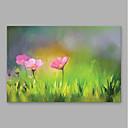 رخيصةأون لوحات الزهور والنباتات-هانغ رسمت النفط الطلاء رسمت باليد - الأزهار / النباتية الحديث تشمل الإطار الداخلي / امتدت قماش