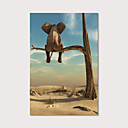 hesapli Tablolar-Boyama Gerdirilmiş Tuval Resimleri - Hayvanlar Fotografik Modern Sanatsal Baskılar