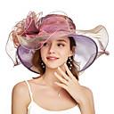 povoljno Party pokrivala za glavu-Organza Kentucky Derby Hat / Fascinators / Šešir s Cvijet / U slojevima 1 komad Zabava / večer / Poslovni / Svečano / Vjenčanje Glava