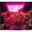 זול LED Grow Lights-1pc 300 W 2200 lm 100 LED חרוזים גוברת אור מתקן אדום כחול ורוד 220-240 V