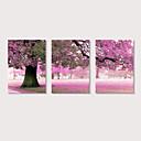 cheap Prints-Print Stretched Canvas Prints - Landscape Photographic Modern Three Panels Art Prints