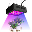 cheap Plant Growing Lights-1pc 80 W 2195-2535 lm 42 LED Beads Growing Light Fixture Red 85-265 V