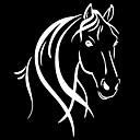 זול רכב הגוף קישוט והגנה-מכונית סוס ראש ורעמת מדבקה מדבקה רכב קישוט