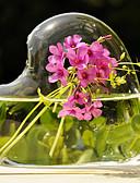 olcso Női hálóruházat-Amulett Anyag Üveg Táblázat Center Pieces Vázák Edény készletek Tartós Tavasz Nyár Ősz Tél Tavasz, Ősz, Tél, Nyár Minden évszak
