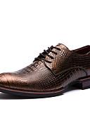povoljno Muške košulje-Muške Cipele Koža Proljeće Ljeto Jesen Zima Čizmice svečane cipele Oksfordice Hodanje Vezanje Za Kauzalni Zabava i večer Crn Bronza Tupe