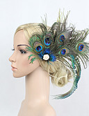 cheap Fashion Hats-Rhinestone / Feather / Alloy Flowers / Headwear / Hair Clip with Floral 1pc Special Occasion Headpiece