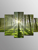 cheap Men's Hoodies & Sweatshirts-Stretched Canvas Print Abstract, Five Panels Canvas Horizontal Print Wall Decor Home Decoration