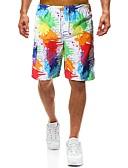 hesapli Erkek Pantolonları ve Şortları-Erkek Plaj Tarzı / Tropik AB / ABD Beden Günlük / Sade Atletik Salaş Chinos / Şortlar Pantolon - Gölgelendirme Yaz Gökküşağı L XL XXL / Büzgülü / Elastikiyet