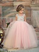 Χαμηλού Κόστους Φορέματα για κορίτσια-Νήπιο Κοριτσίστικα χαριτωμένο στυλ Φλοράλ Δίχτυ Αμάνικο Μακρύ Πολυεστέρας Φόρεμα Ανθισμένο Ροζ