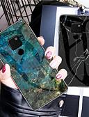 זול מגנים לטלפון-מגן עבור Huawei Mate 10 / Mate 10 pro / Mate 10 lite עמיד בזעזועים / תבנית כיסוי אחורי שיש קשיח TPU / זכוכית משוריינת