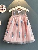 זול שמלות לבנות-שמלה ללא שרוולים רשת / טלאים / רקום טלאים ורד מאובק סגנון חמוד / סגנון רחוב בנות ילדים