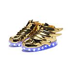LED Zapato