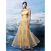 Corte en A Bateau Neck Hasta el Tobillo Tul Evento Formal Vestido con Apliques por TS Couture®