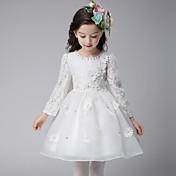 Vestido de baile feminino vestido de menina com flor de joelho - mangas compridas de organza com gola de jóia com applique by ydn