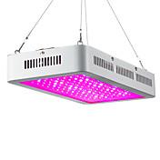300W Luces LED para Crecimiento Vegetal 150 leds LED de Alta Potencia 13200lm Blanco Cálido Blanco Rojo Azul