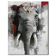 Hand Painted Oil Painting Animal African Elephan with Stretched Frame
