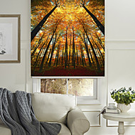 cheap Blinds & Shades-The Autumn Woods Roller Shade