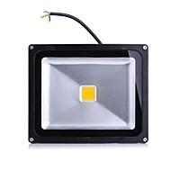 Focos de LED 1 leds LED de Alta Potência Branco Quente Branco Frio 2000lm 2800-7000K AC 85-265V