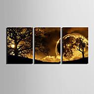 E-home® 3 ağaç dekoratif boyama seti altında tuval sanat alacakaranlıkta gergin