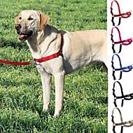 犬 ハーネス リード スリップリード 調整可能 / 引き込み式 ステンレス鋼 ナイロン ブラック グレー ローズ レッド ブルー