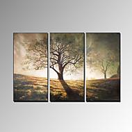 billige -Hånd-malede Landskab Moderne Tre Paneler Hang-Painted Oliemaleri For Hjem Dekoration