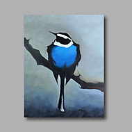 Ready to Hang Stethed Hand-Painted Oil Painting Canvas Wall Art Pop Art Animals Blue Birds Home Deco One Panel