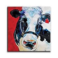 billiga Djurporträttmålningar-Hang målad oljemålning HANDMÅLAD - Djur Klassisk Europeisk Stil Moderna Duk