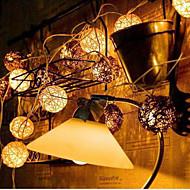 nieuwe LED chinlon licht snaar van vakantie tuinlandschap lamp serie 10lamp houder