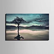 직사각형 현대/현대 벽 시계 , 기타 캔버스 35x50cm(14inchx20inch)x1pcs/40x60cm(16inchx24inch)x1pcs/ 50x70cm(20inchx28inch)x1pcs