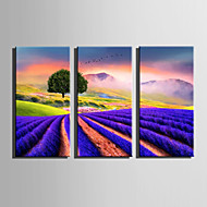 cheap Prints-Landscape Floral/Botanical Modern, Three Panels Canvas Vertical Print Wall Decor Home Decoration