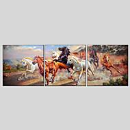 Håndmalte Abstrakt Dyr Oljemalerier + Prints,Moderne Klassisk Tre Paneler Lerret Hang malte oljemaleri For Hjem Dekor