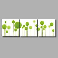 Print Strukket Lærred Print - Blomstret / Botanisk Moderne Tre Paneler Kunsttryk