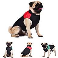 Kat Hund Frakker Vest Hundeklær Fargeblokk Rød Grønn Blå Bomull Kostume For kjæledyr Herre Dame Hold Varm