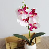 billige Kunstig Blomst-Kunstige blomster 1 Afdeling Europæisk Stil Blålilla / Orkideer Bordblomst